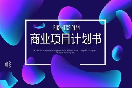 商业项目计划规划书PPT模板