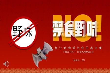 禁止食用野生动物主题班会PPT模板