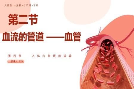 人教版七年级生物下册教学内容血流的管道—血管